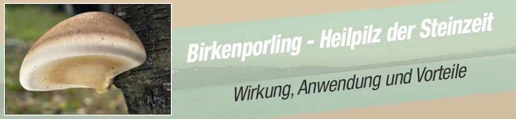 Birkenporling Ratgeber 2020